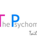 the_psychometric_world