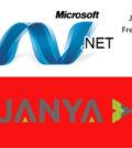 Dot Net Developer