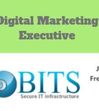 Digital Marketing Executive