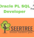 Oracle PL SQL Developer